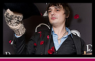 Booking: Pete Doherty для Tommy D Lounge Bar